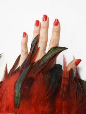 Перья страуса красные с черным (t0817) т-26 - Фото 16